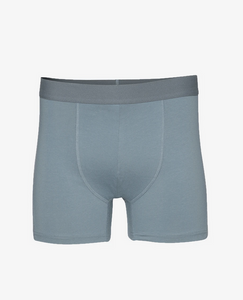 Organic Boxer Brief by Colourful Standard