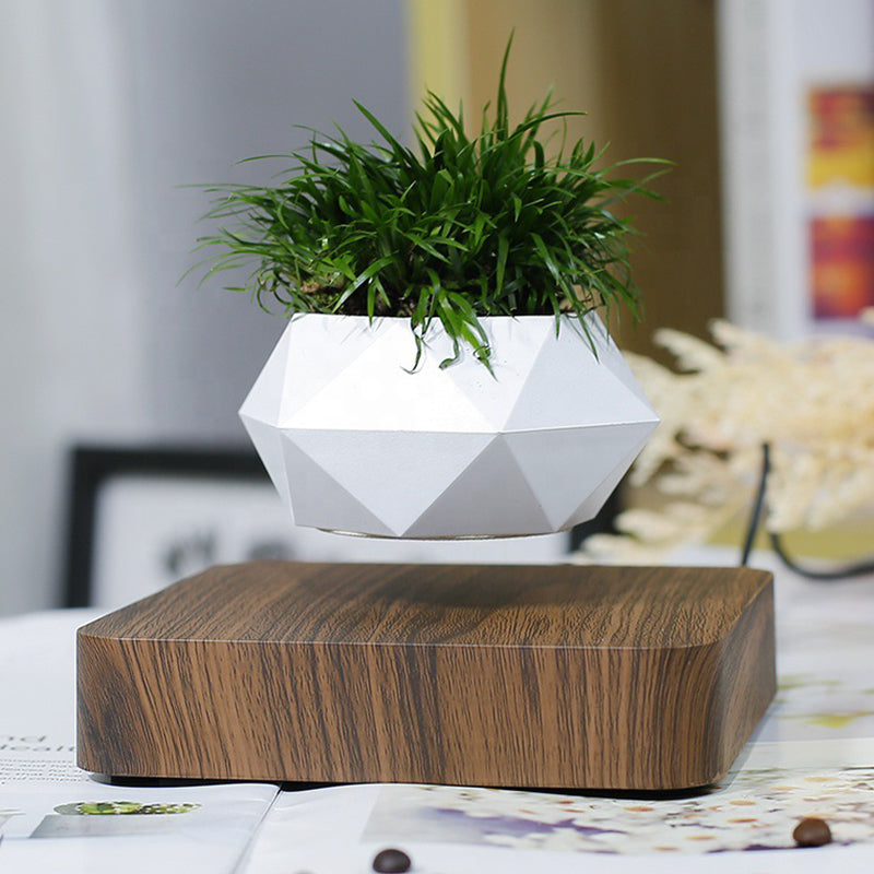 Magnetic Levitation Flower Pot Home Desk Decor