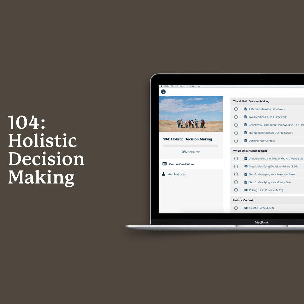 104: Holistic Decision Making