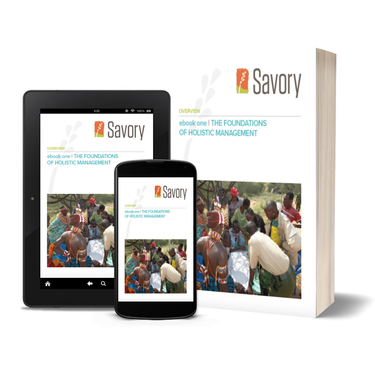 Introduction To Management Ebook