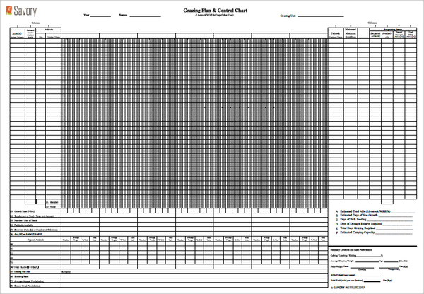 Grazing Planning Forms (METRIC)