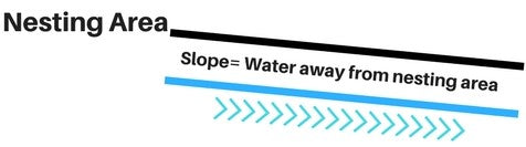 Chicken Coop Blog- Water Sloping away from Nesting Area- Waterproof Sealant