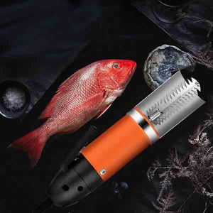 Electric Fish Skin Scaler