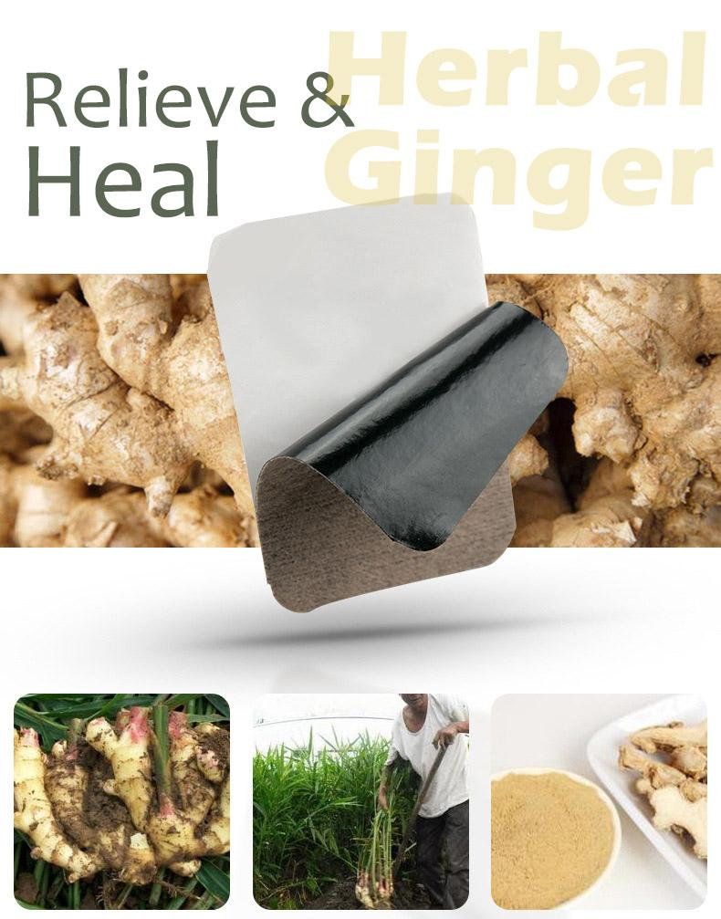 Insta-Heal Herbal Ginger Patch