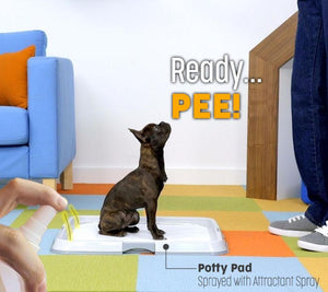 Pet Potty Trainer Attractant Spray