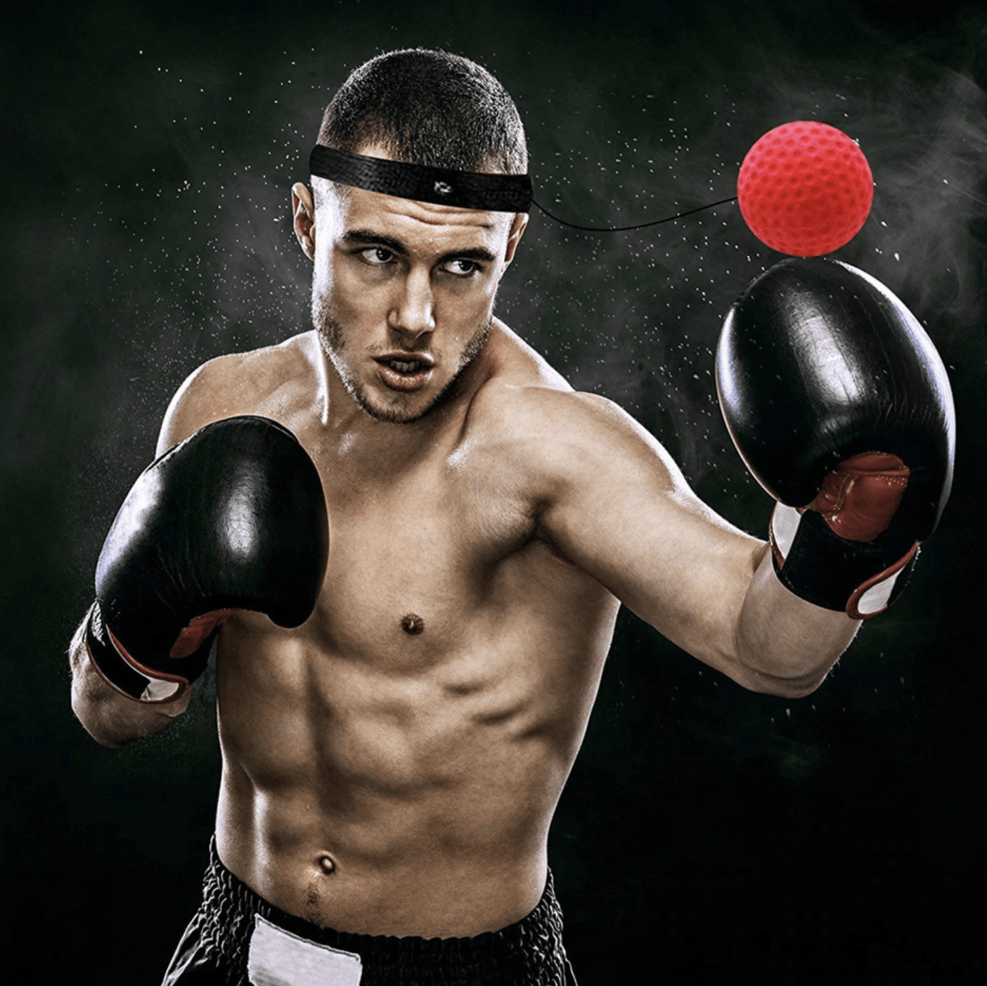 Professional Boxing Reflex Ball