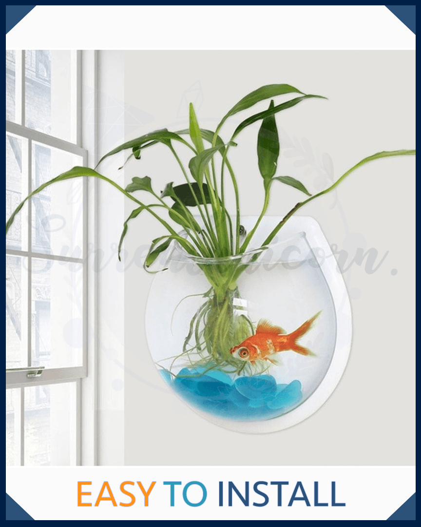 Modern Wall Hanging Bubble Plant Bowl