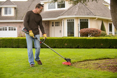 String Trimmer / Edger