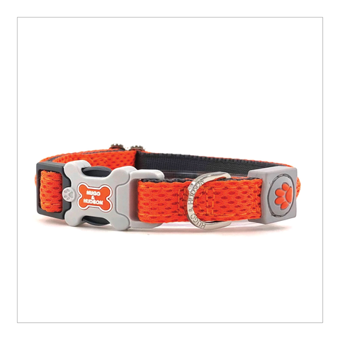Dog Collar - Hugo & Hudson