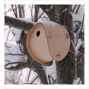 Bird Box - I didn't think I would find such a uber-cool bird box but here it is....