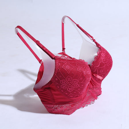 Women Lace Padded Bra - Red ( 1055 ) - The Women Wears
