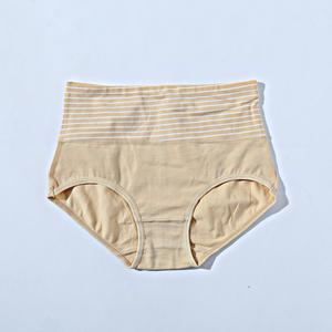Panties Pack Of 3 With Multiple Colours (880) - The Women Wears