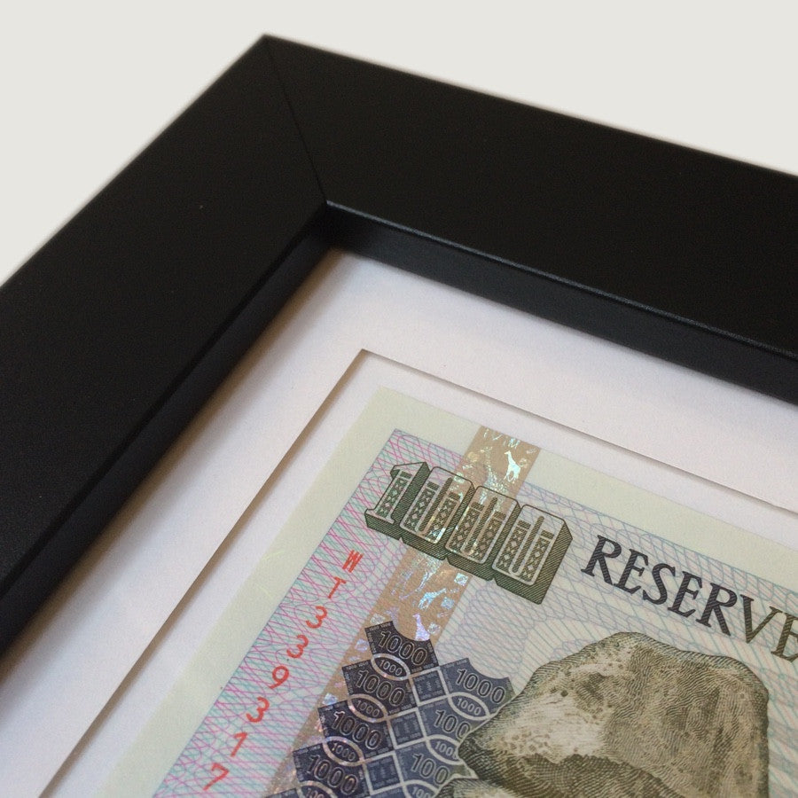 Framed Currency #2