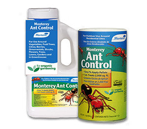 Monterey Ant Control* OMRI Listed