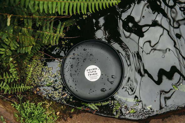 David Shrigley Frisbee - I collect records