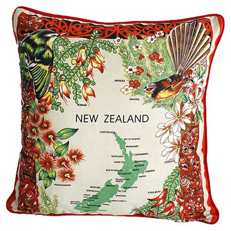 Dishy Kea cushion