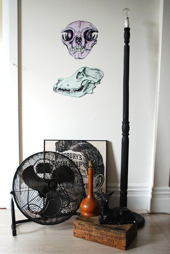 Evie Kemp skull wall decals