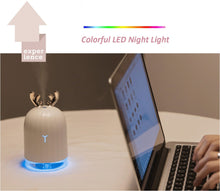 Load image into Gallery viewer, High Quality 220ML Ultrasonic Air Humidifier