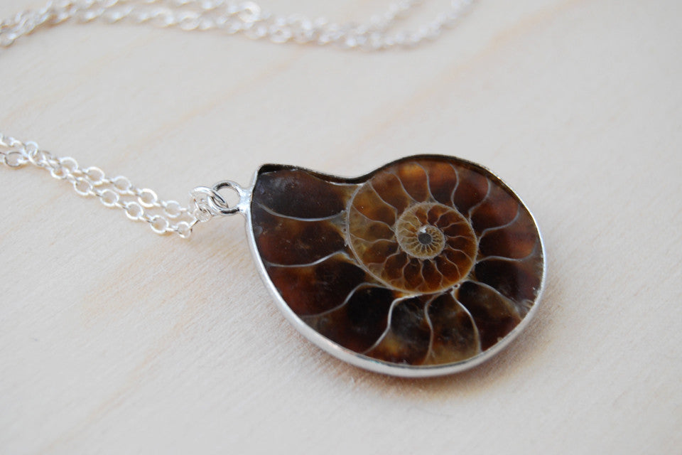 Ammonite Fossil Shell Necklace | Fossilized Shell Necklace | Ammonite Pendant | Nautilus Necklace - Enchanted Leaves - Nature Jewelry - Unique Handmade Gifts