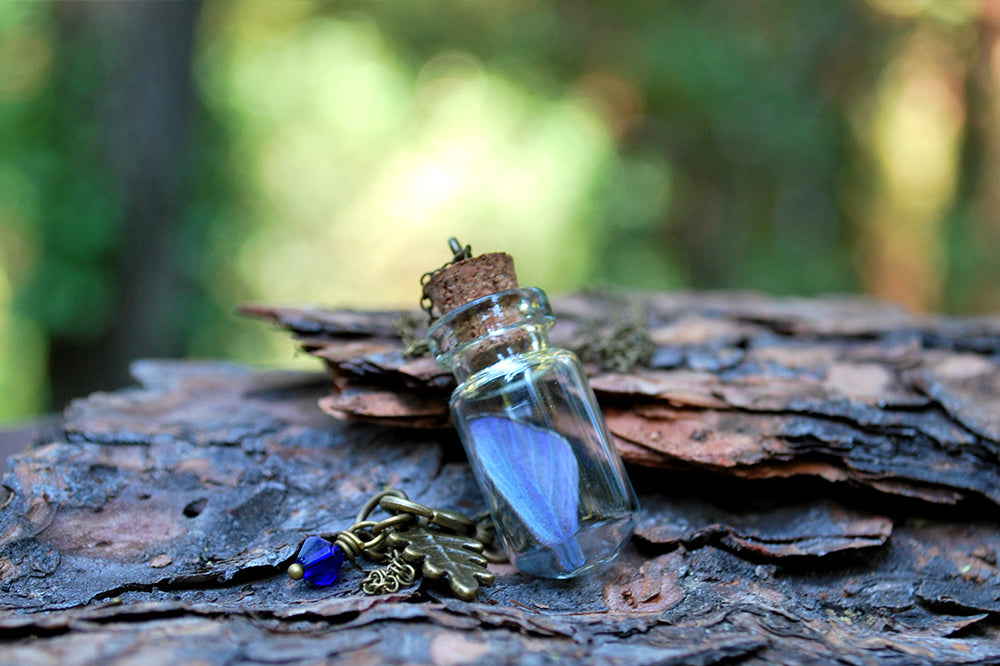 Butterfly Wing Bottle Terrarium | White & Purple Wing Necklace | Cute Butterfly Necklace - Enchanted Leaves - Nature Jewelry - Unique Handmade Gifts