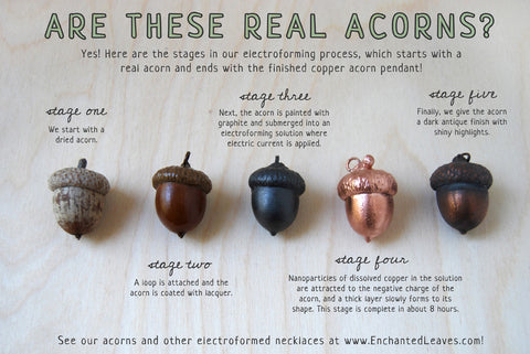 Electroforming Acorns in Copper | How to Electroform | Electroplating Leaves | Learn to Electroform Crystals | Copper Electroforming Solution | DYI Electroforming Conductive Paint | Learning How to Plate Jewelry
