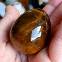 Load image into Gallery viewer, Crystals - Tiger Eye (Gold) Polished Egg