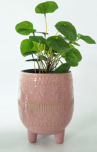 Load image into Gallery viewer, Pretty In Pink Planter