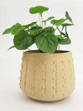 Load image into Gallery viewer, Boho Planter