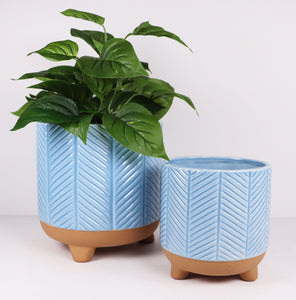 Pretty As A Peacock Planter Baby Blue