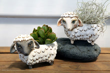 Load image into Gallery viewer, Allen Designs - BABY Sheep Planter WHITE