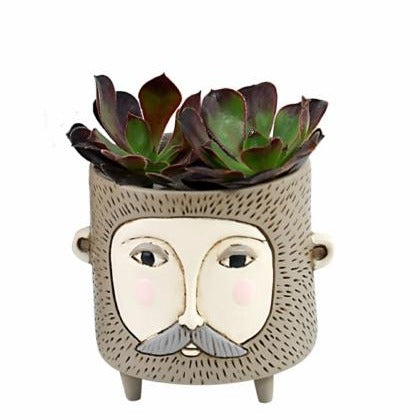Allen Designs - BABY Hairy Jack Planter