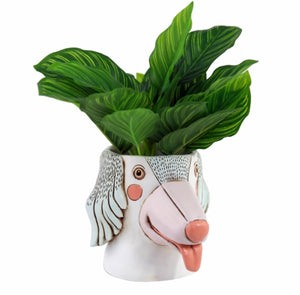 Allen Designs - Saluki Dog Planter