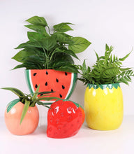 Load image into Gallery viewer, Watermelon Planter