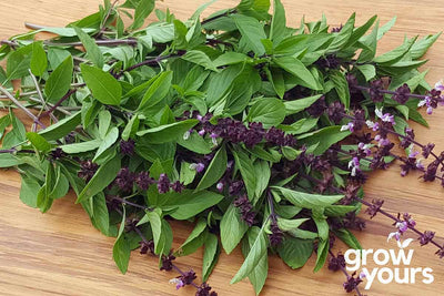 Basil Thai on chopping board