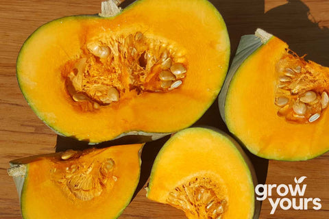 Pumpkin Whangaparaoa Crown sliced with seeds New Zealand grown
