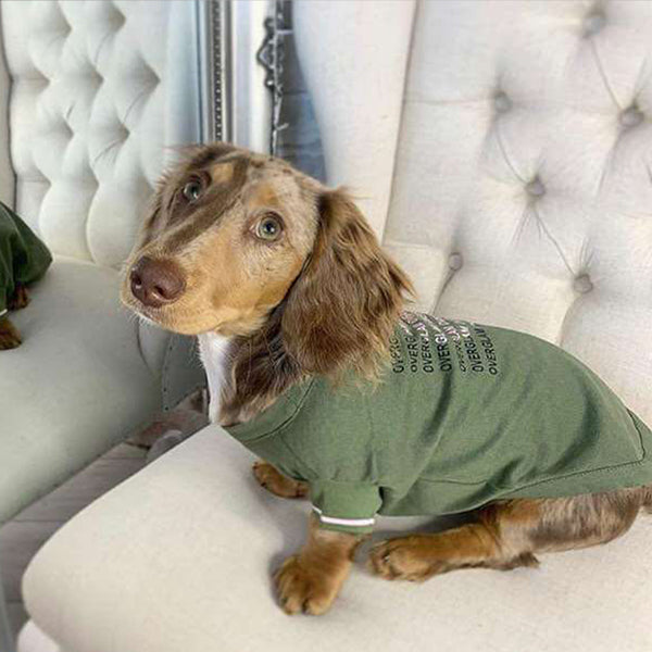 Dog with Over Glam t-shirt