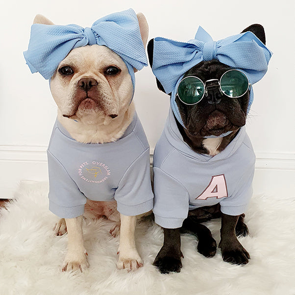 Dogs with Over Glam t-shirts