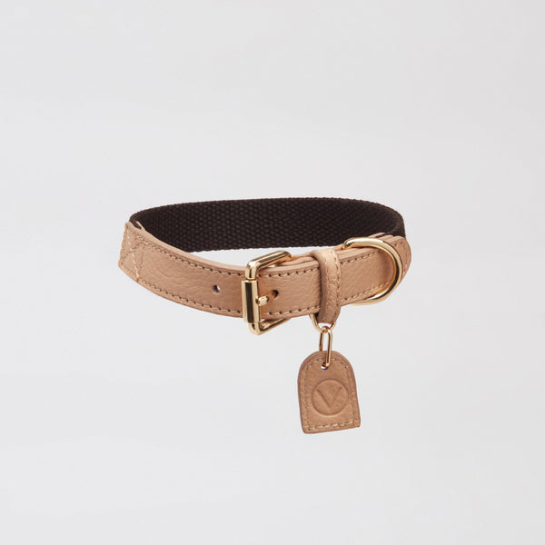 Contrast Collar (Apricot & Black)