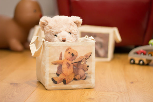 20 & 30cm Furry Friends storage cube