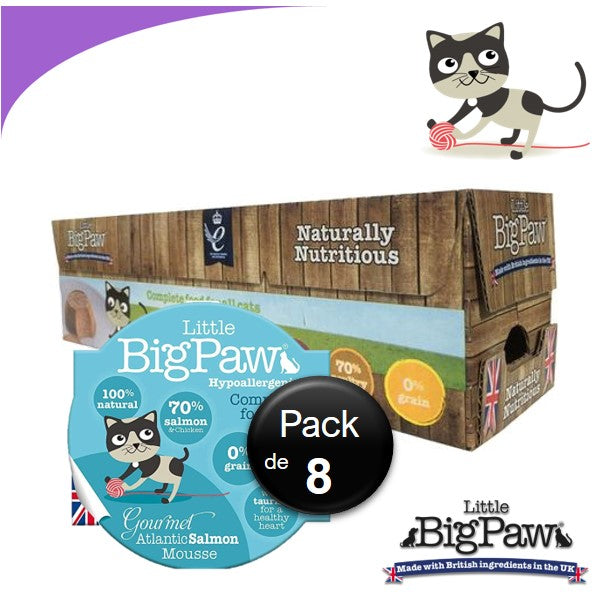 Little Big Paw Chat 85g Saumon - Carton