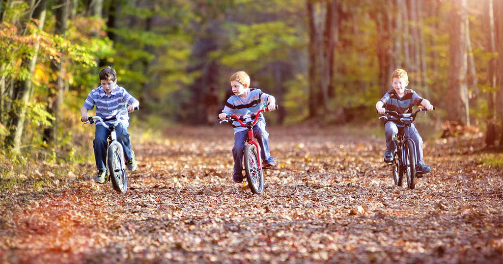 Image result for Reasons Why It Is Essential To Let Your Children Bike