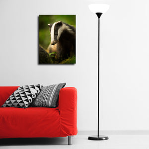 """Badger Cub"" - Gallery Wrapped Canvas by Tesni Ward"