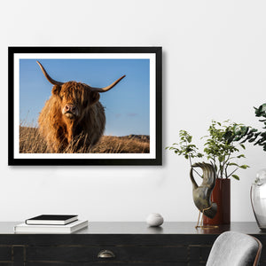 """Cattle"" - Photographic Print by Tesni Ward"