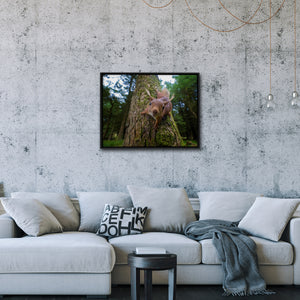 """Curiosity"" - Gallery Wrapped Canvas by Tesni Ward"