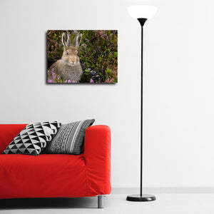 """Cute Leveret"" - Gallery Wrapped Canvas by Tesni Ward"