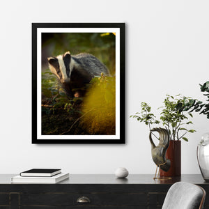 """Lyssa"" - Photographic Print by Tesni Ward"