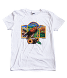 Women's Falcon T-Shirt