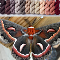 Giant Silk Moth - Crown Wools Set