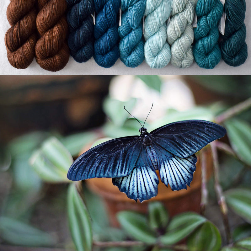 products/ForestButterfly-Inspiration.jpg