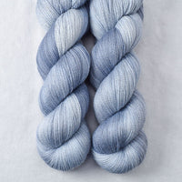 Baird's Whale - Miss Babs Yearning yarn